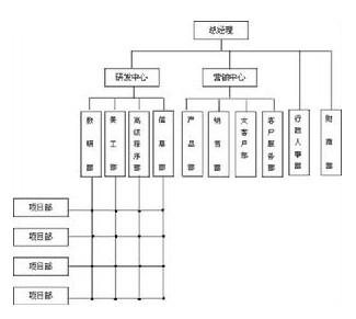 矩阵制结构组织图